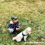2018_Boomer