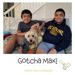 Gotcha Max