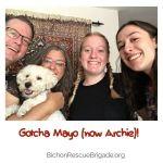Gotcha_Mayo_nowArchie