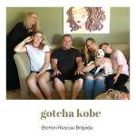 Gotcha_kobe
