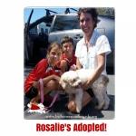 Rosalie_home