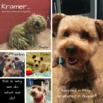 20160521_Kramer