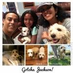 20170521_Jackson