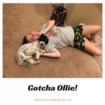 20170521_Ollie