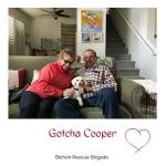 20200424_Gotcha_Cooper