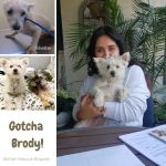 20200703_Gotcha_Brody