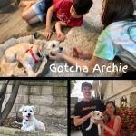 20210606_Gotcha_Archie