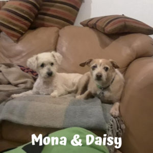 Mona and Daisy
