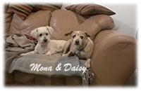 Mona and Daisy